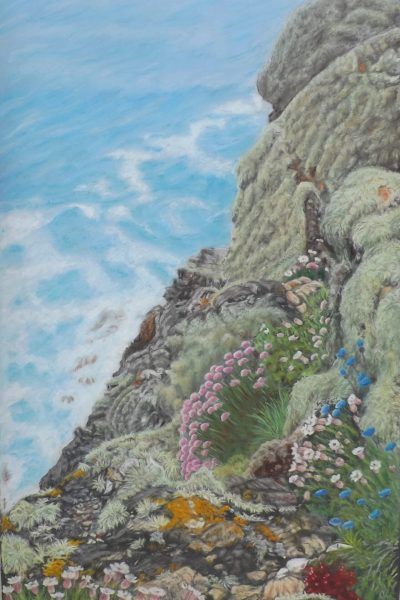 Eve Knowles Cape Cornwall, May